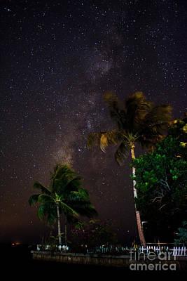 Photograph - Starry Point by Quinn Sedam