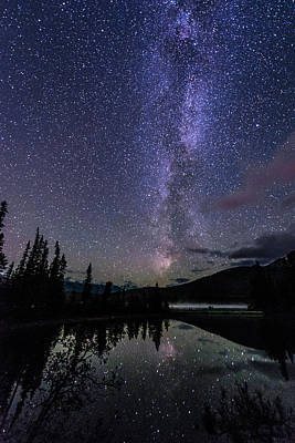Photograph - Starry Starry Night by Alex Lapidus