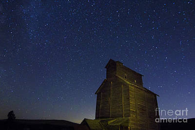 Astro Photograph - Starry Starry Nights by Betty Doran
