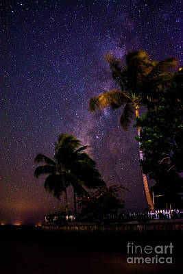 Photograph - Starry Starry Nights by Quinn Sedam