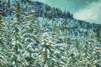 Photograph - Starry Valley by Jean OKeeffe Macro Abundance Art