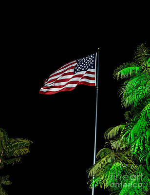 Fluttering Photograph - Stars And Stripes Forever by Robert Bales