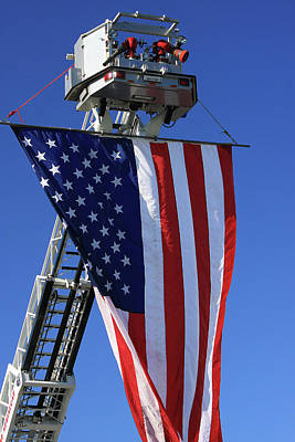Photograph - Stars And Stripes by Karol Livote