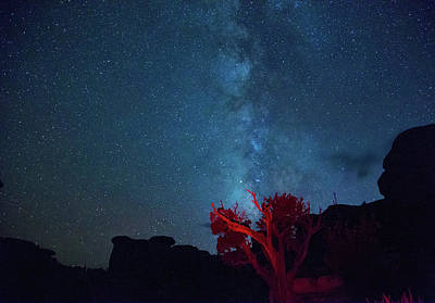 Photograph - Stars Canyons And Junipers by Kunal Mehra