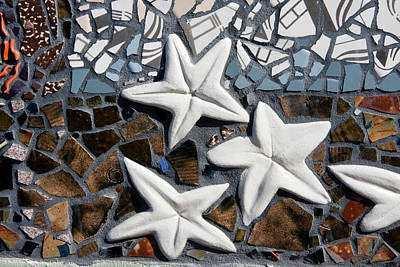 Photograph - Stars  by Jill Lang
