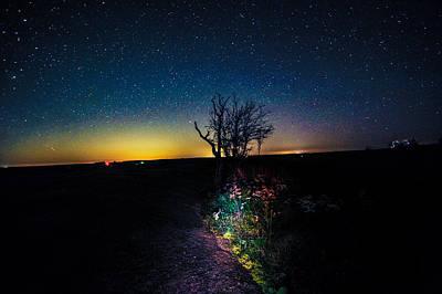 Water Droplets Sharon Johnstone - Enchanted Nights by JK Davis