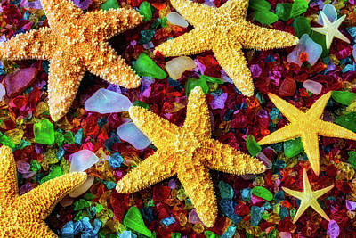 Sea Glass Photograph - Stars On Sea Glass by Garry Gay