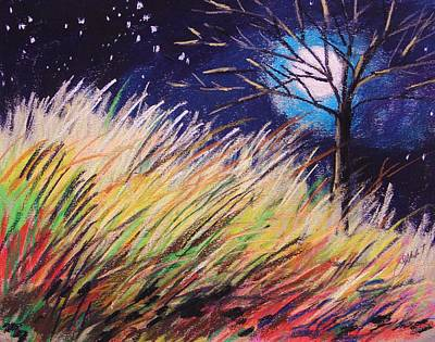 Bright Colours Drawing - Stars Over Grasses by John Williams