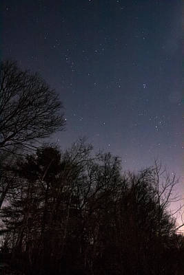 Photograph - Stars Over The Trees by Brian MacLean