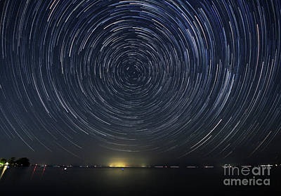 Photograph - Startrails Around Polaris by Charline Xia
