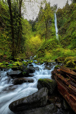 Photograph - Starvation Creek And Falls by Ryan Manuel