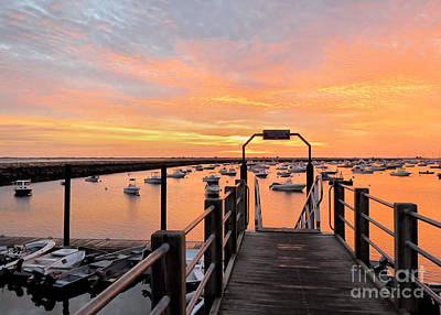 Photograph - State Boat Ramp At Sunrise by Janice Drew