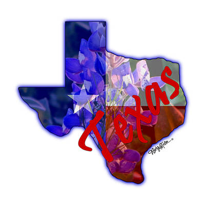 Photograph - State Of Texas by Barbara Tristan