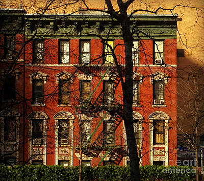 Photograph - Stately Old Home - New York by Miriam Danar