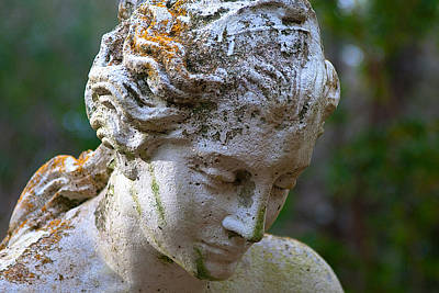 Photograph - Statue At Magnolia Gardens by Pat Exum