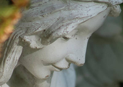 Photograph - Face Of Serenity by Marilyn Wilson