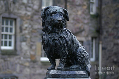 Photograph - Statue Of Greyfriars Bobby In Edinburgh by David Birchall