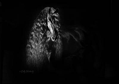 Photograph - Statuesque Black Beauty by Pinnacle Friesians