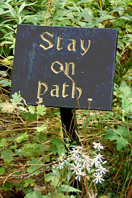 Photograph - Stay On Path by Suzanne Gaff