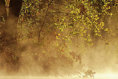 Photograph - Steam Mist by Robert Charity