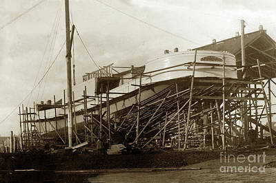 Photograph - Steam Schooner Daisy Gadsby  1911 by California Views Mr Pat Hathaway Archives