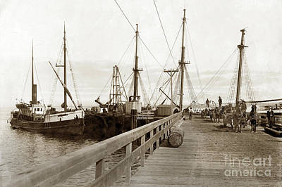 Photograph - Steam Schooner Grace Dollar Docked At Oil Pier Monterey C 1904 by California Views Mr Pat Hathaway Archives