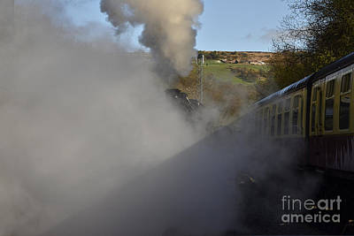 Steam Steam Steam Art Print by Nichola Denny