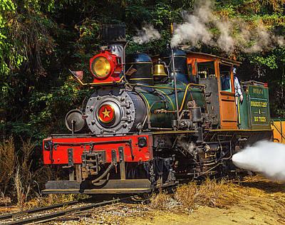 Headlight Photograph - Steam Train Dixiana by Garry Gay