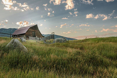 Photograph - Steamboat Barn In Summer by Don Schwartz