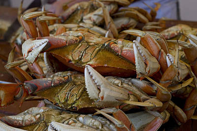 Photograph - Steamed Crab by Randy Bayne