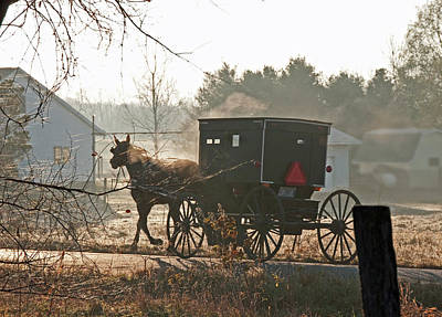 Amish Photograph - Steamy Amish Horse by David Arment