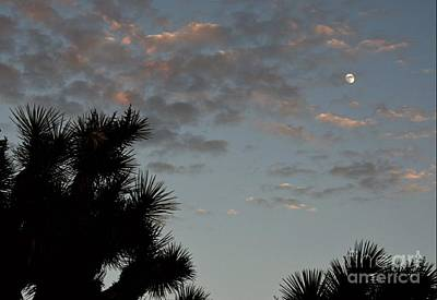 Photograph - Steamy Summer Moon by Angela J Wright