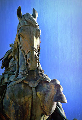 Photograph - Steed Of The Roman King  by JAMART Photography