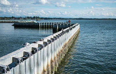 Photograph - Steel Breakwater And Drayton Harbor by Tom Cochran