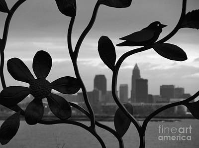 Photograph - Steel Fences In Cleveland by Mike Bruckman