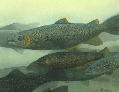 Painting - Steelhead by Anne Havard