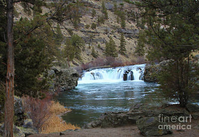 River Photograph - Steelhead Falls by Gary Wing