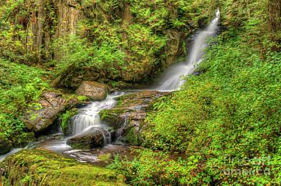 Photograph - Steelhead Falls In Fall by Rod Wiens