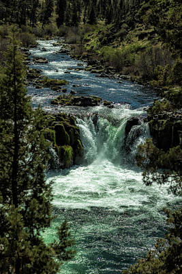 Photograph - Steelhead Falls Vertical by Belinda Greb