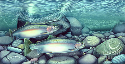 Steelhead Trout Art Print by Jon Wright