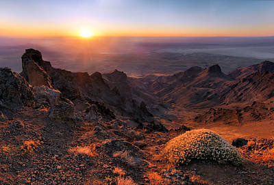 Photograph - Steens View by Leland D Howard