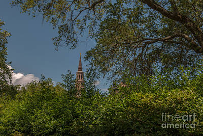 Whimsical Flowers - Steeple Glimpse by Dale Powell