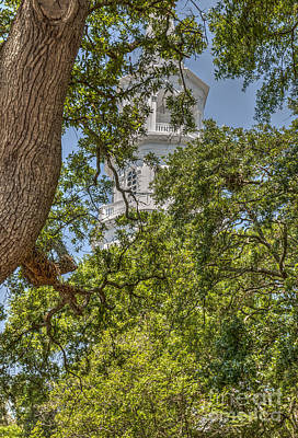 Photograph - Steeple Through The Tree's by Dale Powell