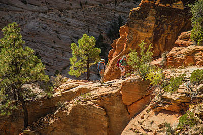 Photograph - Steeply Up The Canyon by Doug Scrima