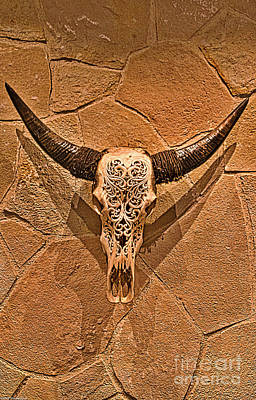 Photograph - Steer Skull by Mitch Shindelbower