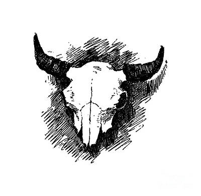 Drawing - Steer Skull Tee by Edward Fielding