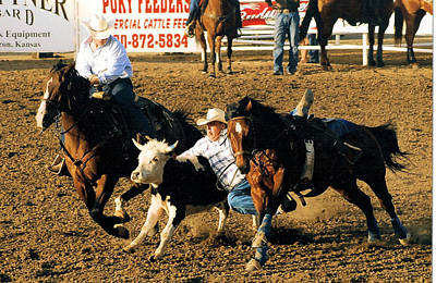 Working Cowboy Drawing - Steer Wrestling 101 by Cheryl Poland
