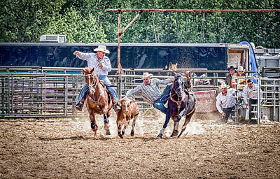 Print featuring the photograph Steer Wrestling With An Audience by Darcy Michaelchuk