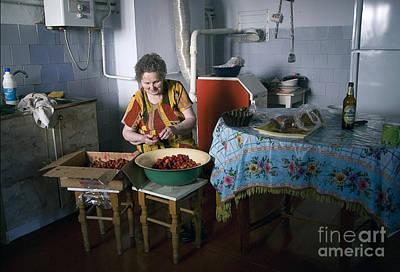 Stefania Cleans Strawberries In Chortkiw Ukraine Art Print by Yuri Lev