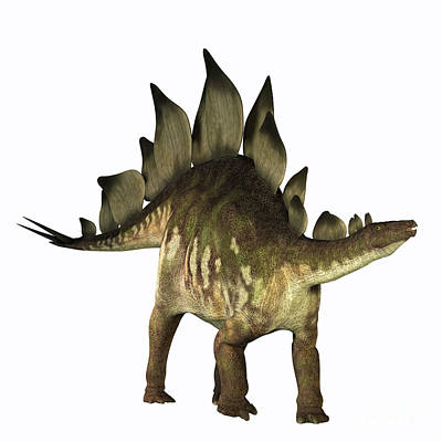 Triassic Painting - Stegosaurus Profile by Corey Ford